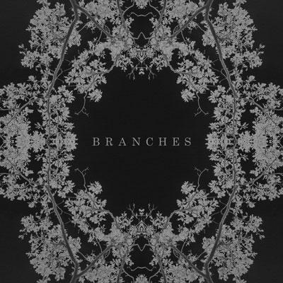 آلبوم موسیقی Branches پیانو امبینت زیبایی از AK