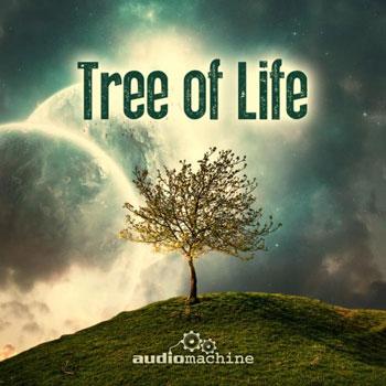 """تریلرهای حماسی امیدبخش در آلبوم """" درخت زندگی """""""