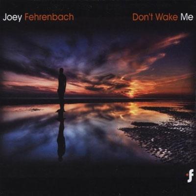 آلبوم « بیدارم نکن » موسیقی الکترونیک زیبایی از جوی فرنباخ