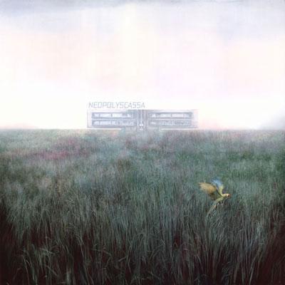 آلبوم Neopolyscassa موسیقی پیانو امبینت راز آلود از Misha Mishenko