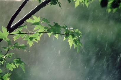 رقص باران در دل طبیعت